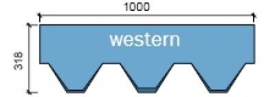 Вестерн